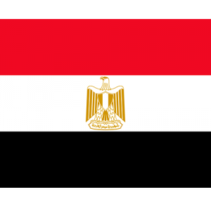 Repatriation to Egypt Cairo